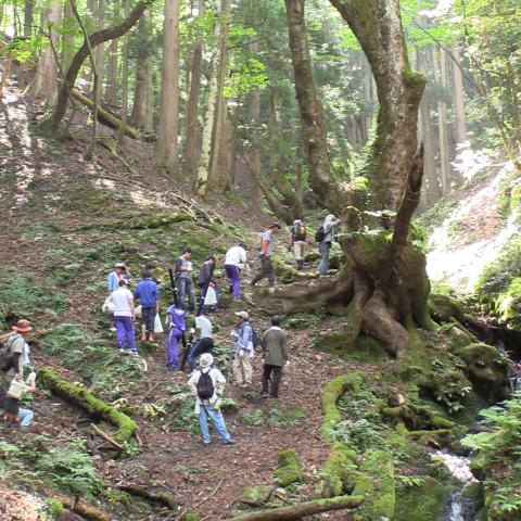 【地域紹介】森&海の京都な中丹地域編