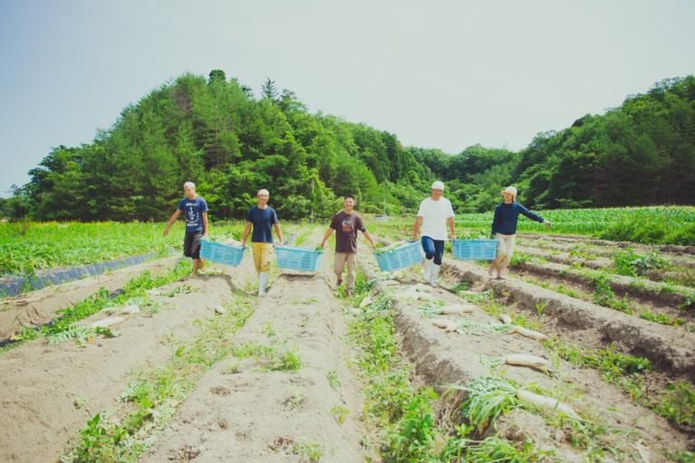 Local Farm Tour in 京丹後